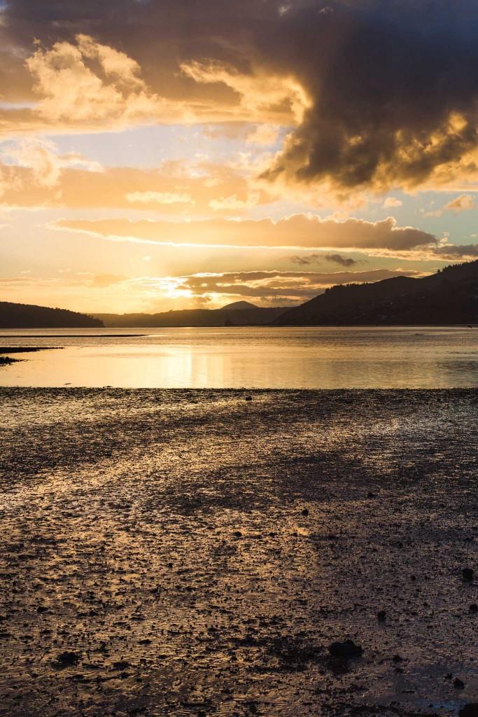 Sunset at Dunedin-Sarah Galvan Photographe