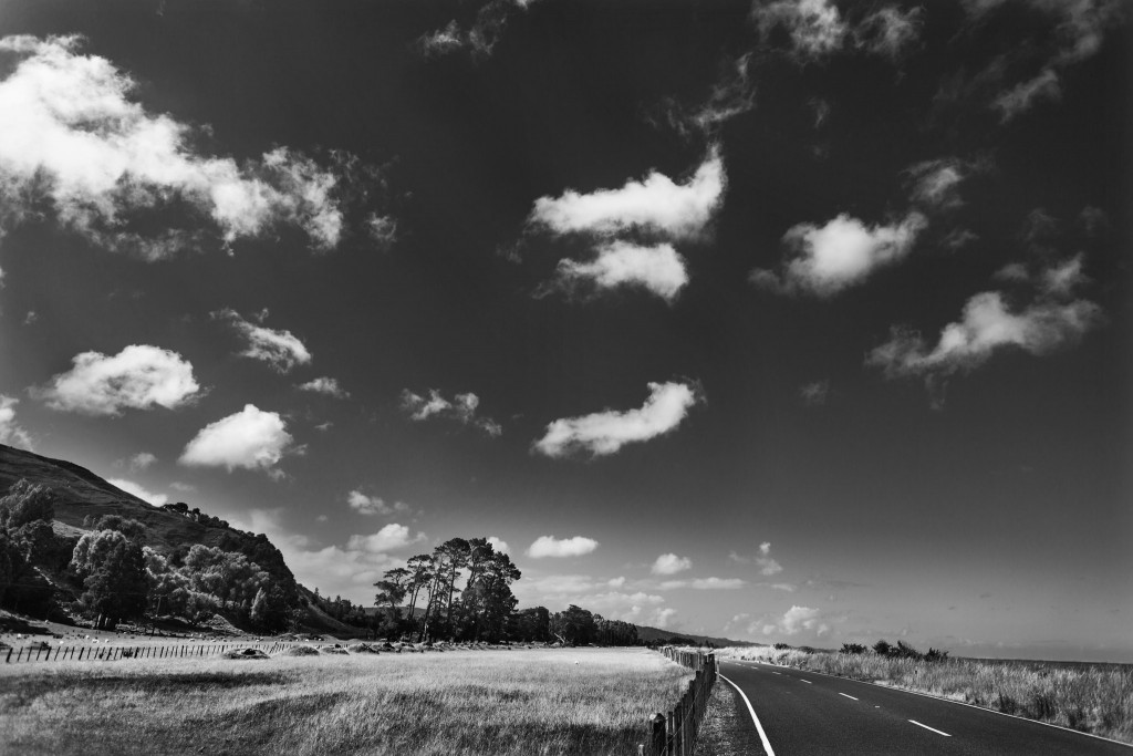 New Zealand-Collingwood-Sarah Galvan Photographe