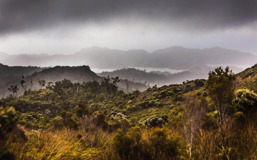 Panorama lors de la randonnée Knuckle Hill - Golden Bay-New Zealand-Collingwood-Sarah Galvan Photographe-13