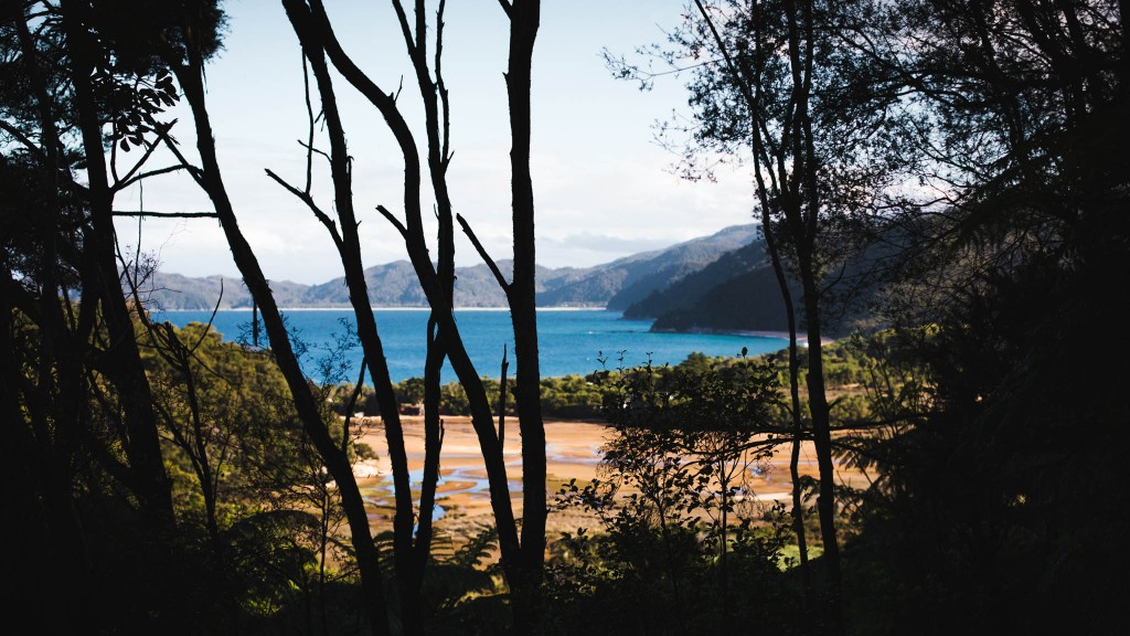 Abel Tasma Park-New Zealand-Collingwood-Sarah Galvan Photographe-1