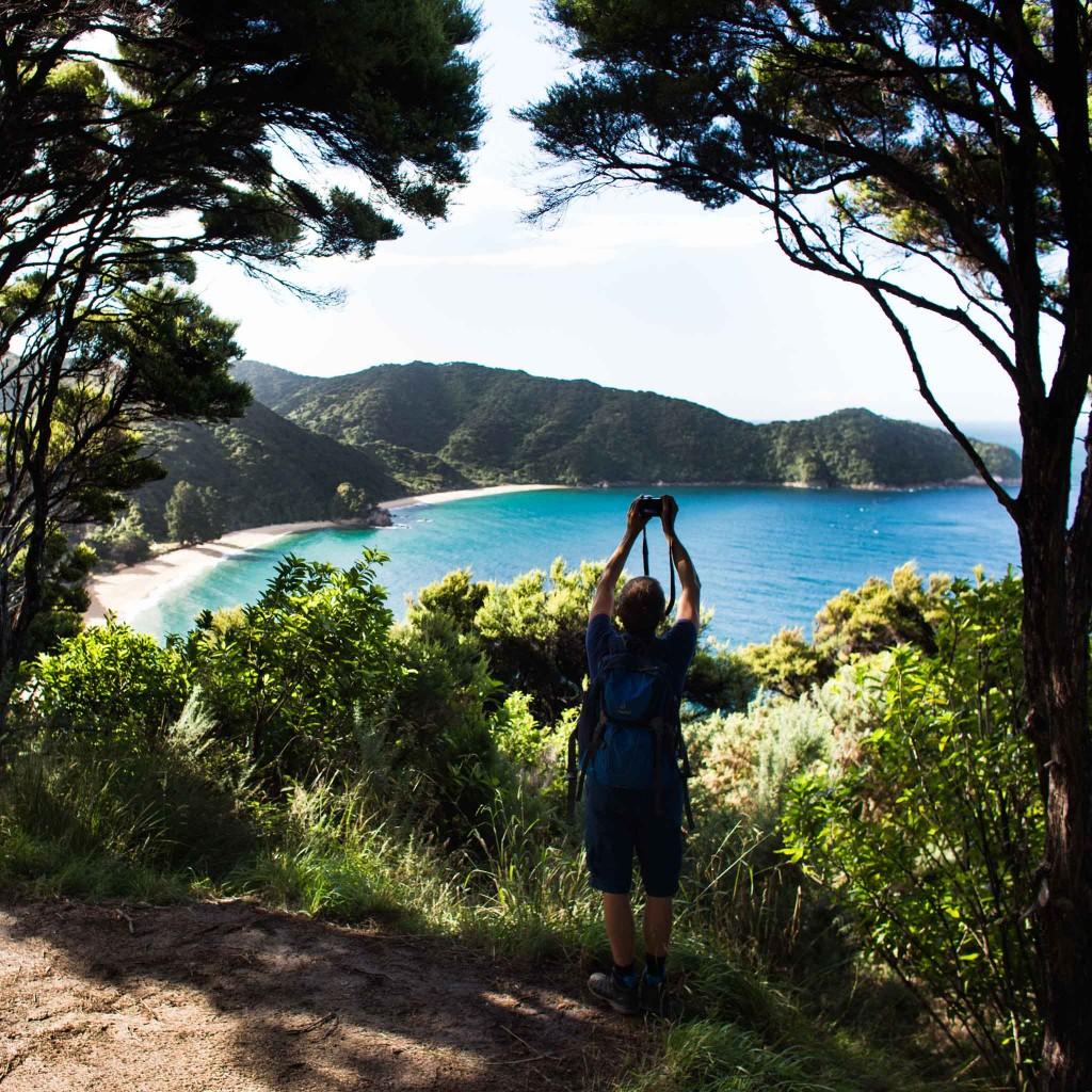 Abel Tasma Park-New Zealand-Collingwood-Sarah Galvan Photographe