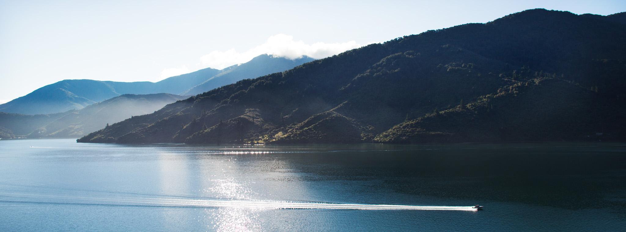 Vue depuis le Bluewater Lodge avant notre départ-New Zealand-Sarah Galvan Photographe