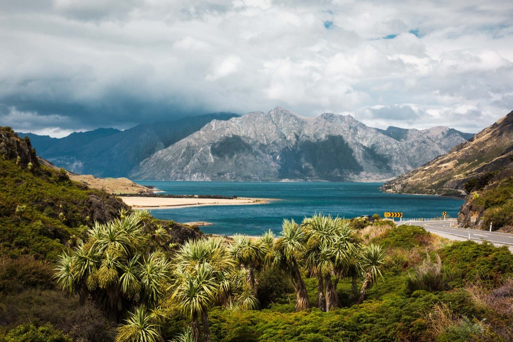 New Zealand-wanaka-Sarah Galvan Photographe-2