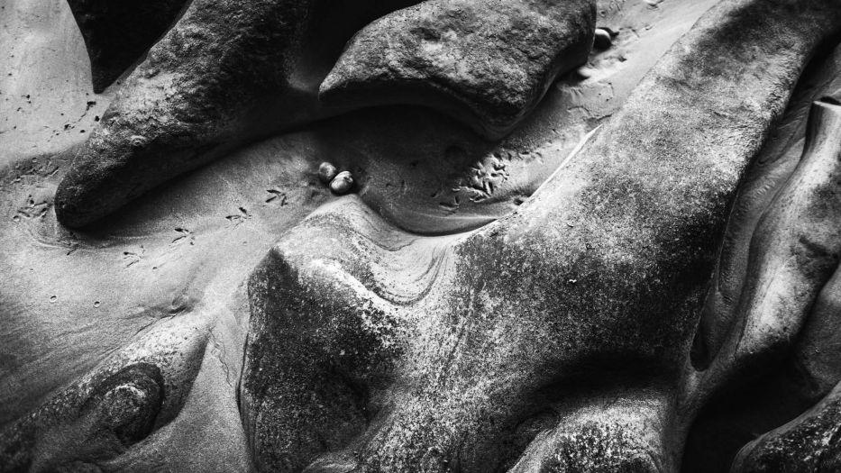 New Zealand-Collingwood-Sarah Galvan Photographe-6-2
